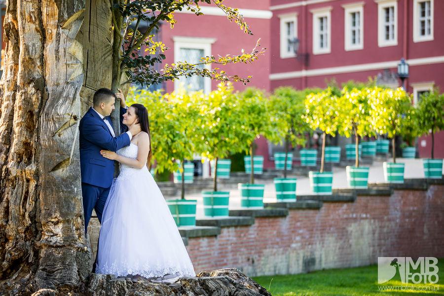 Marta i Szymon plener 98 Marta i Szymon | plener ślubny | zamek Bad Muskau | Most Rakotza w Kromlau